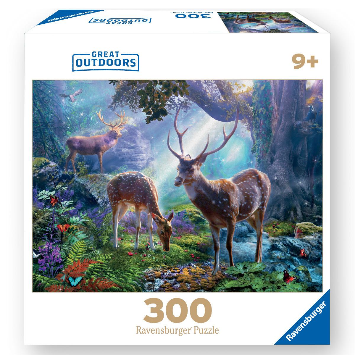 300 Piece Puzzles